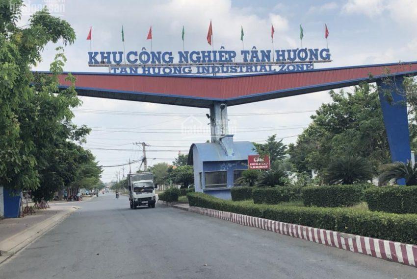 Đất KCN Tân Hương (8)